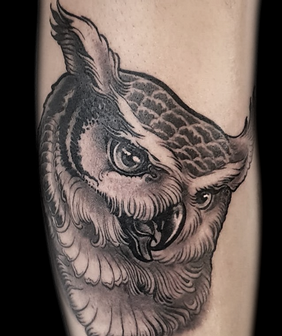 new traditional tattoo owl eule.png